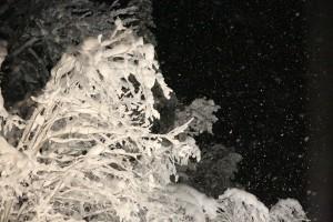 God Jul til hyttefolket på Steinset