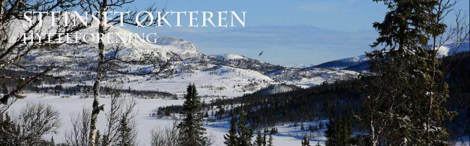 Okteren-vinter_MGL5016