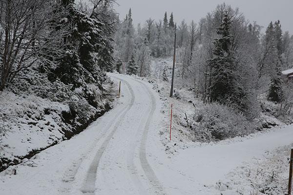 Snø_4_IMGL1676